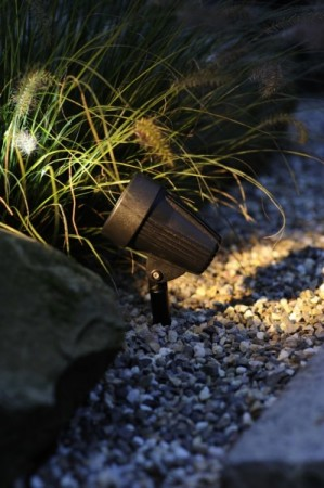 Corvus Spot Power LED 5W